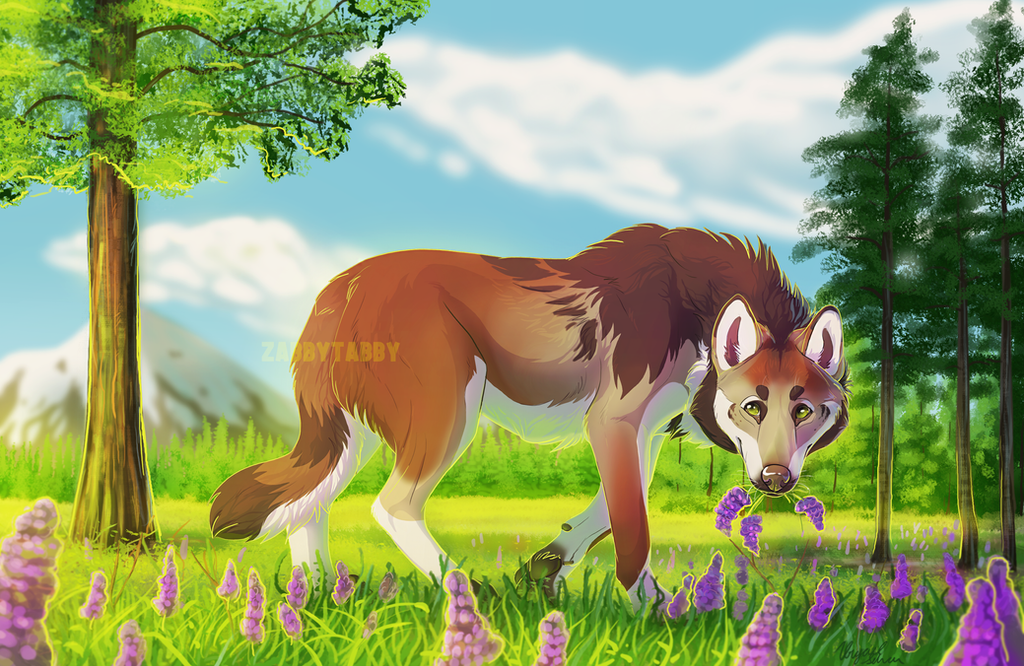 The Edge of the Lupine Field by ZabbyTabby