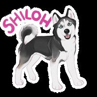 Shiloh Sticker