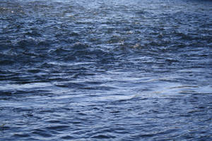 watersurface 34 by honey-stock
