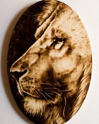 Lion by FuocoRupestre