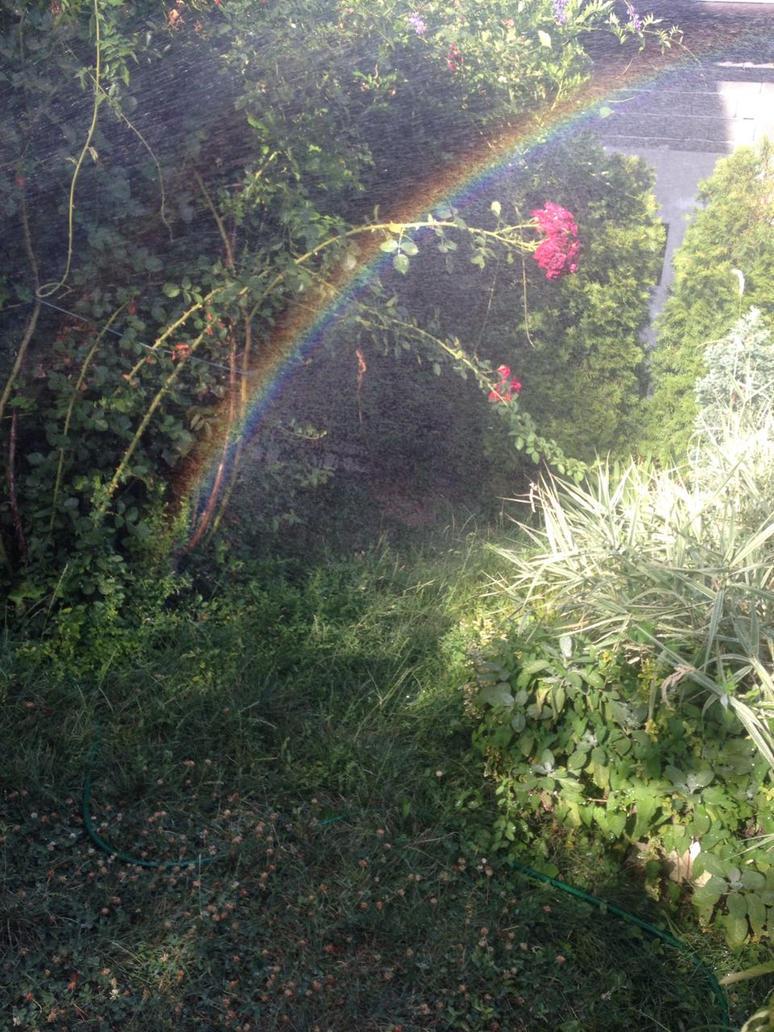 rainbow by firdevsa