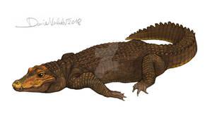 Orange cave-dwelling dwarf crocodile