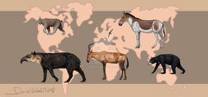 An animal for each continent