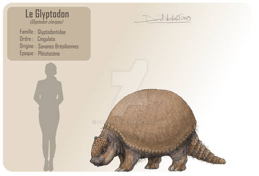 The glyptodon