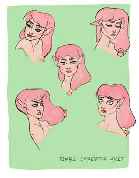Pimble Expressions