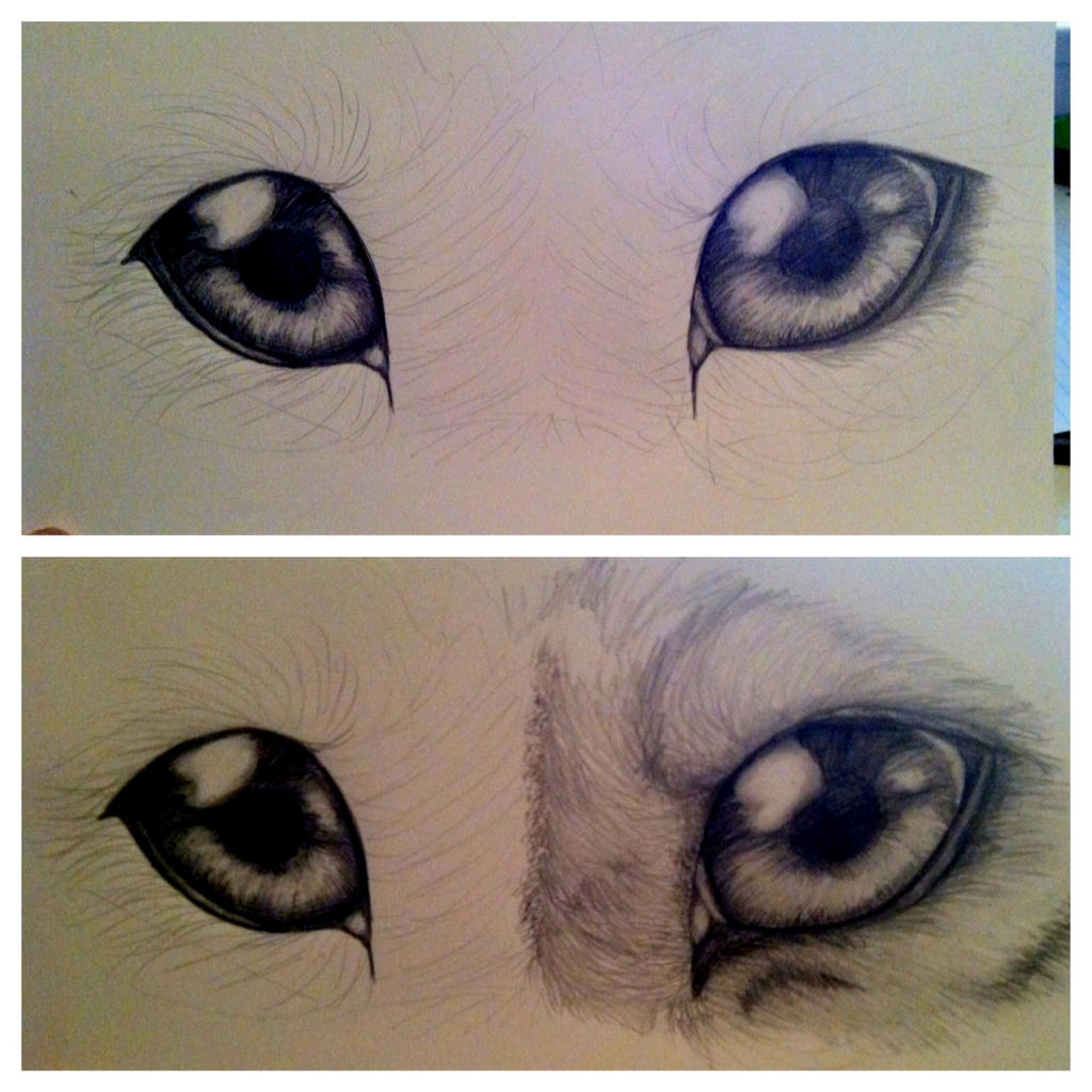 Wip wolf eyes update by hinata8d on deviantart wip wolf eyes update by hinata8d ccuart Image collections