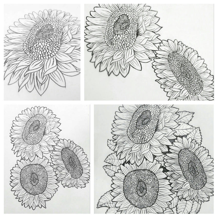Sunflowers- Process by hinata8D