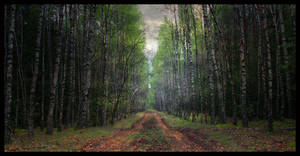 A road to another world