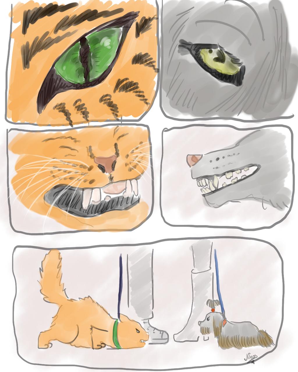 Wolf vs Tiger by edelneos