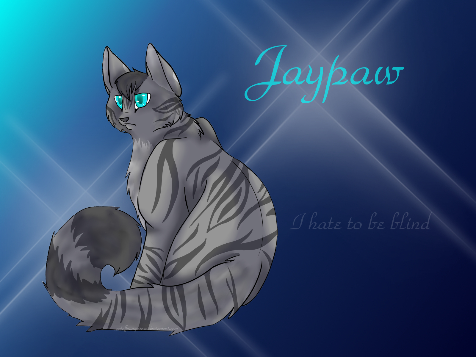 warrior cats wallpapers images