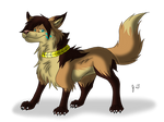 Trade - Canine Pictures - Jaya