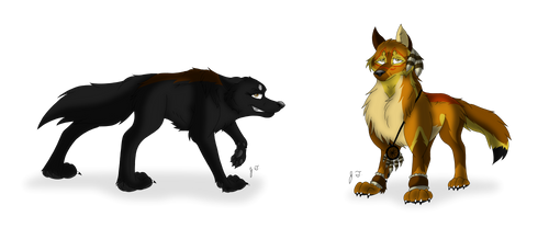 Trade - Canine Pictures - Catorce Jilah and Richu