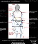 Manual Cuerpo Masculino 1
