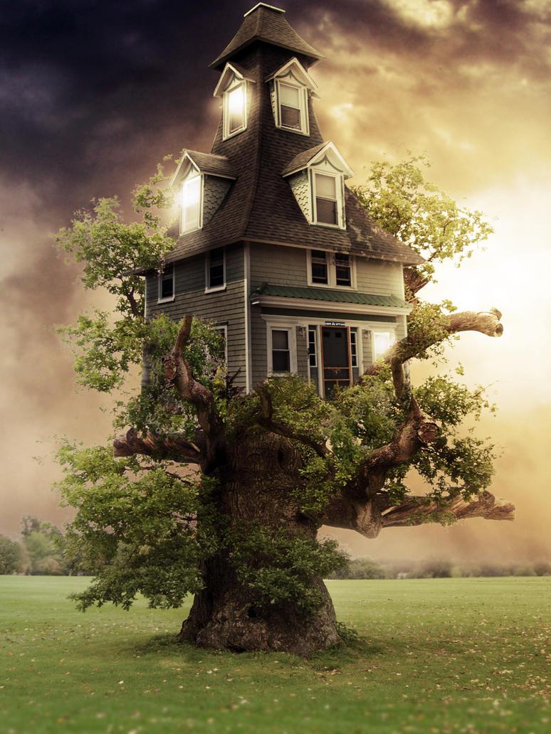 Casa na Arvore by Rafaelll90