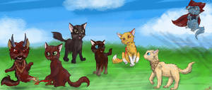 Color Blind cats