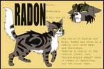 TSM Radon