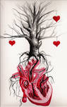 the cardiac tree