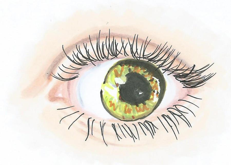 Realistic Eye 02 by LightBlueAngel