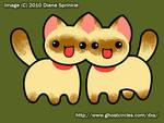 We are Siamese - Revote