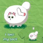 I Lost My Sock