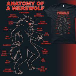 Anatomy of a Werewolf by amegoddess