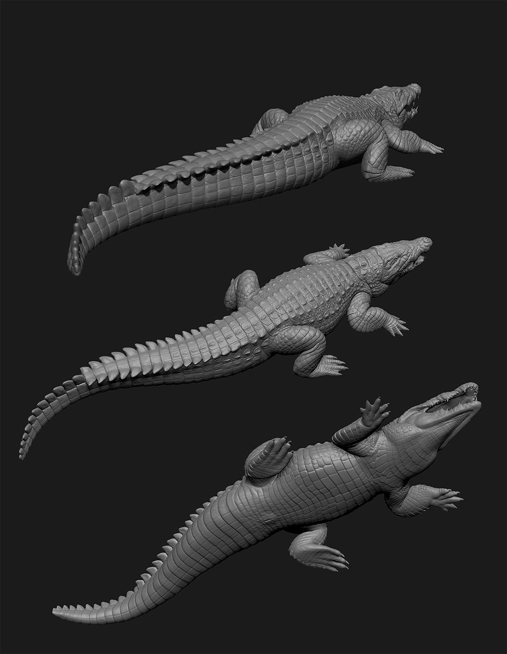 Nile Crocodile study 2 by SinKunArts on DeviantArt