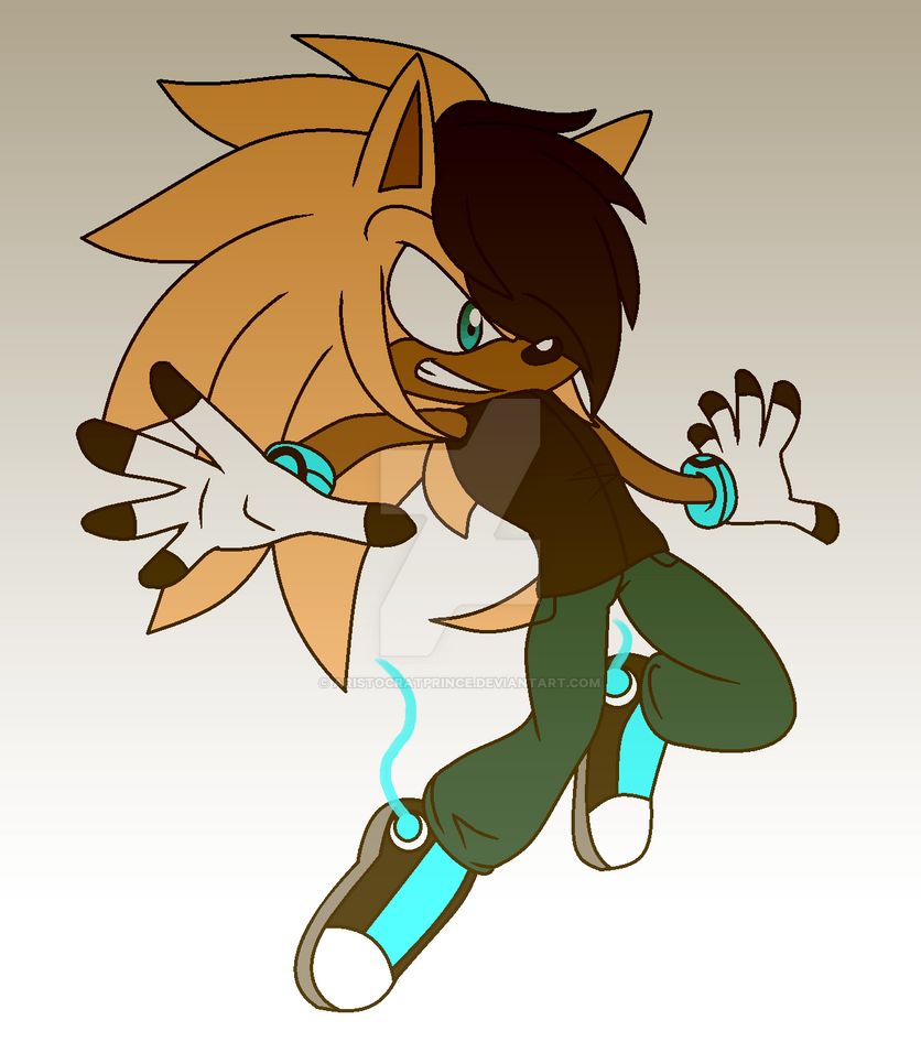 [ Sigma The Hedgehog ] Game On, Bitches!! by AristocratPrince