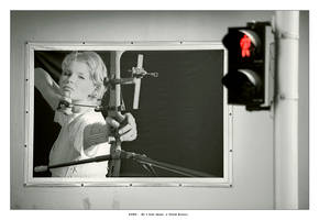 STOP... Or I will shoot by gilad
