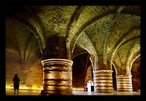 Knights Halls by gilad