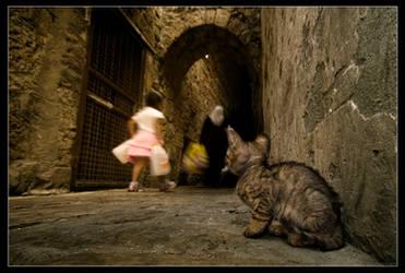 Meow, meow....
