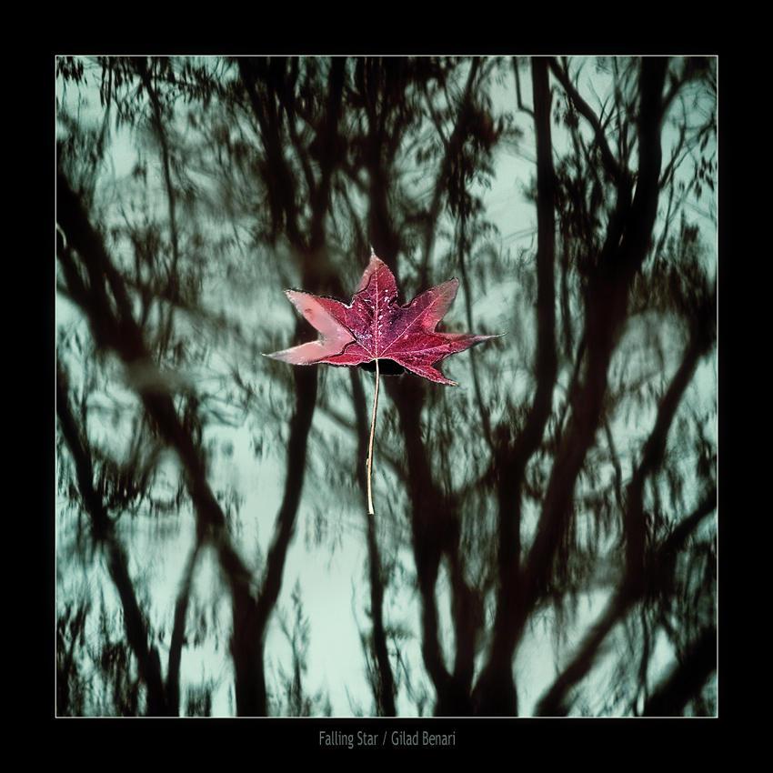 """Obrázek """"http://ic1.deviantart.com/fs12/i/2006/315/8/f/Falling_Star_by_gilad.jpg"""" nelze zobrazit, protože obsahuje chyby."""