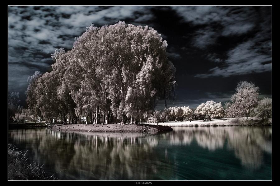 """Obrázek """"http://ic1.deviantart.com/fs12/f/2006/333/1/b/Tree_Station_by_gilad.jpg"""" nelze zobrazit, protože obsahuje chyby."""