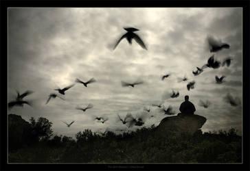 The Bird Watcher by gilad