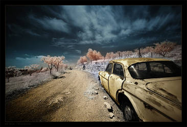 Off Road by gilad