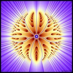 Light of the Seraphim