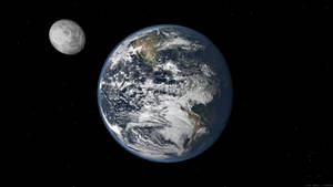 The Terran System