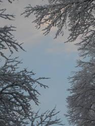 Glimpse of Blue by Eadelle