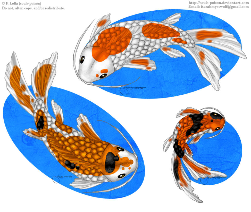 Koi stickers by soulspoison on deviantart for Koi gazette