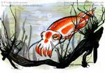 Japanese Koi Cuttlefish