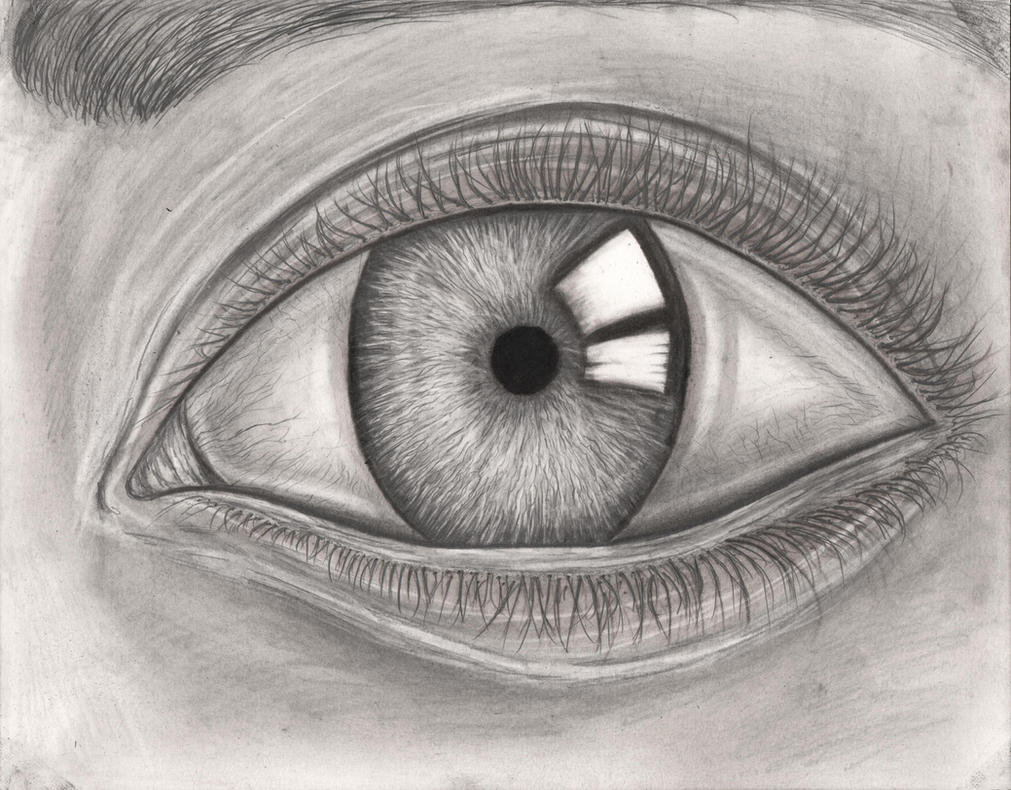 Graphite Pencil Eye Drawing By Pen Tacular Artist