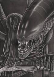 'Alien' graphite drawing by Pen-Tacular-Artist