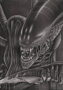 'Alien' graphite drawing