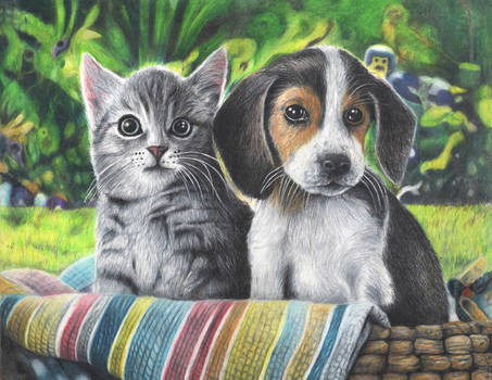 PUPPY AND KITTEN COLOUR PENCIL DRAWING
