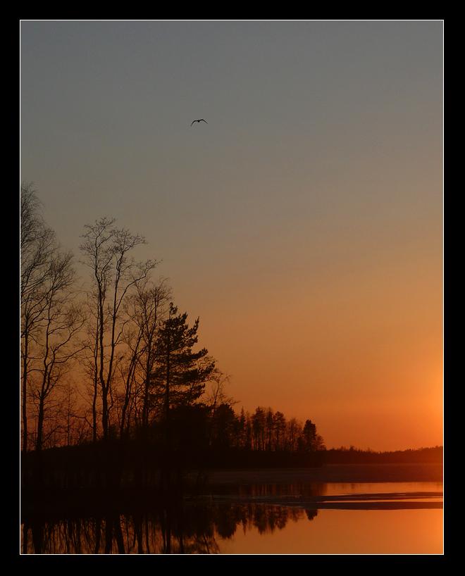 sunset. by ullako