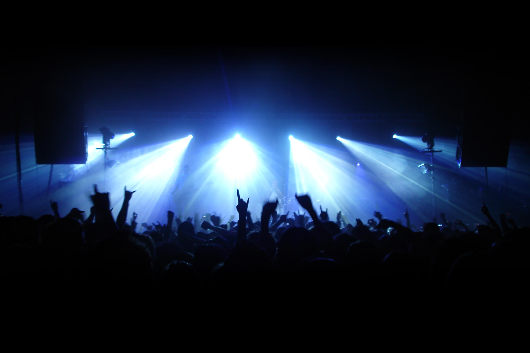 The gallery for --> Concert Lights