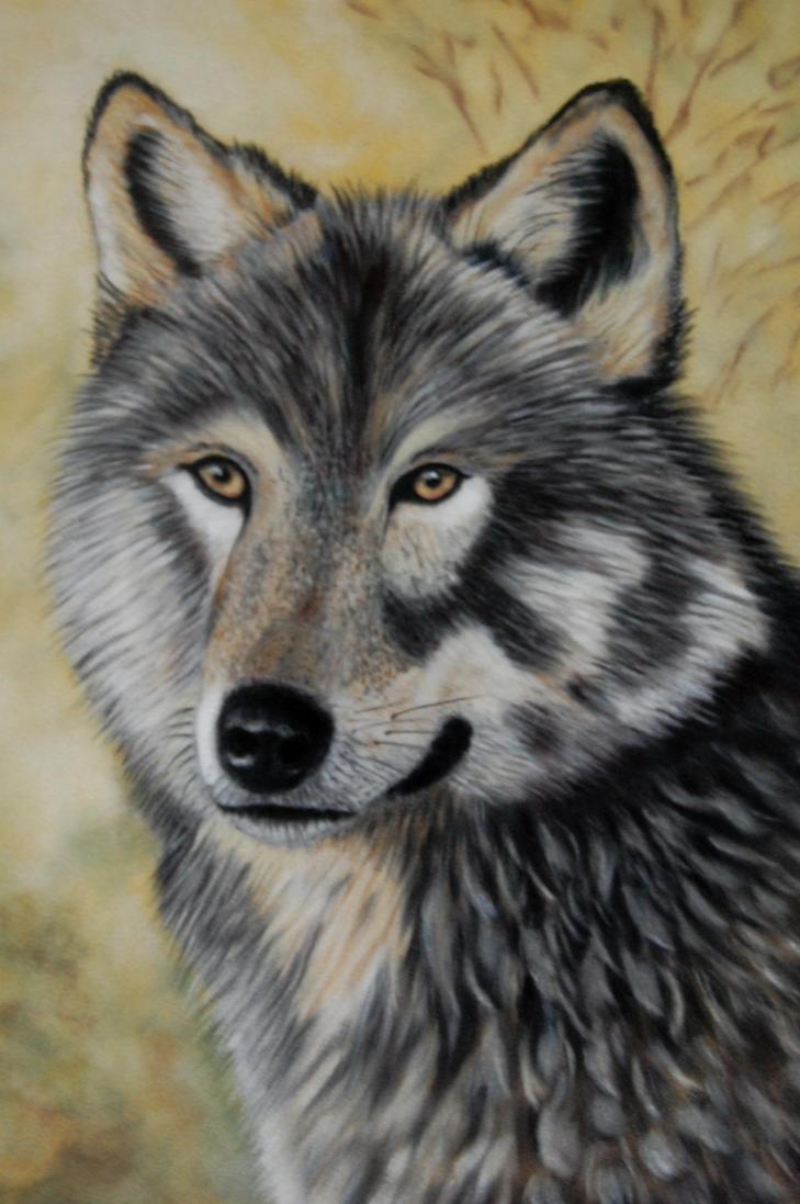 Wolf by davebennett007