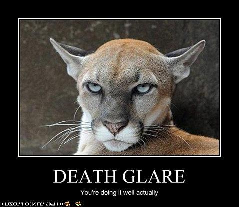 [Image: Death_Glare_by_FreakKAT2.jpg]
