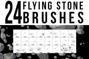24 Flying Stone Brushes by stockgorilla