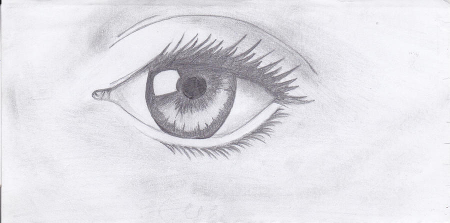 Pencil drawing sketch realistic eye by littlebitsoftoffee