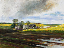 Rape Fields Around Kastanienhof Bentwisch by BarbaraPommerenke